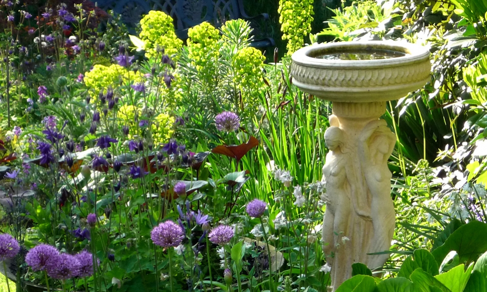 Beautiful garden planting by Gardenia Gardens of Dulwich