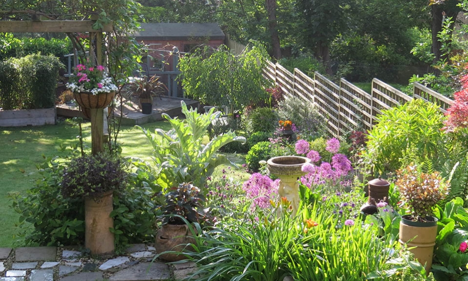 Forest Hill garden by Gardenia Gardens SE London