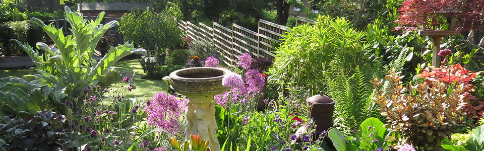 Gardenia Gardens Helen Robson and Steve Robson are master gardeners and garden designers of Dulwich, Forest Hill, Peckham, Herne Hill, Sydenham, Brockley and Nunhead in SE London